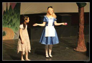Alice au pays des merveilles T 38 15€